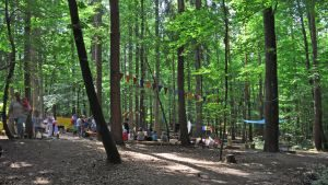 © 2018-07-14, waldwichtel-reutlingen-sommerfest-0741